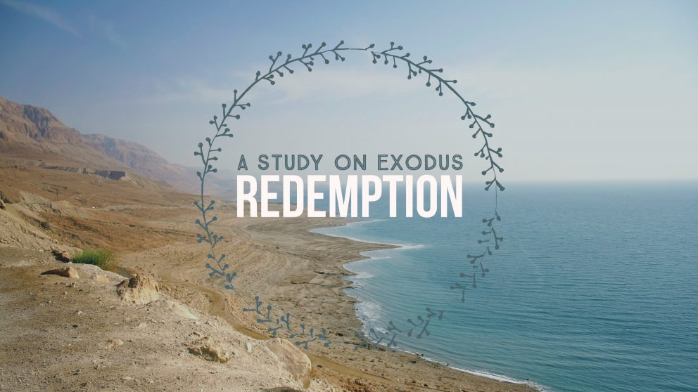 Redemption: A Study on Exodus