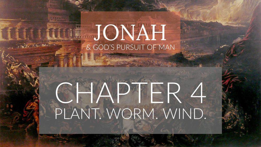 Plant. Worm. Wind. | Jonah 4