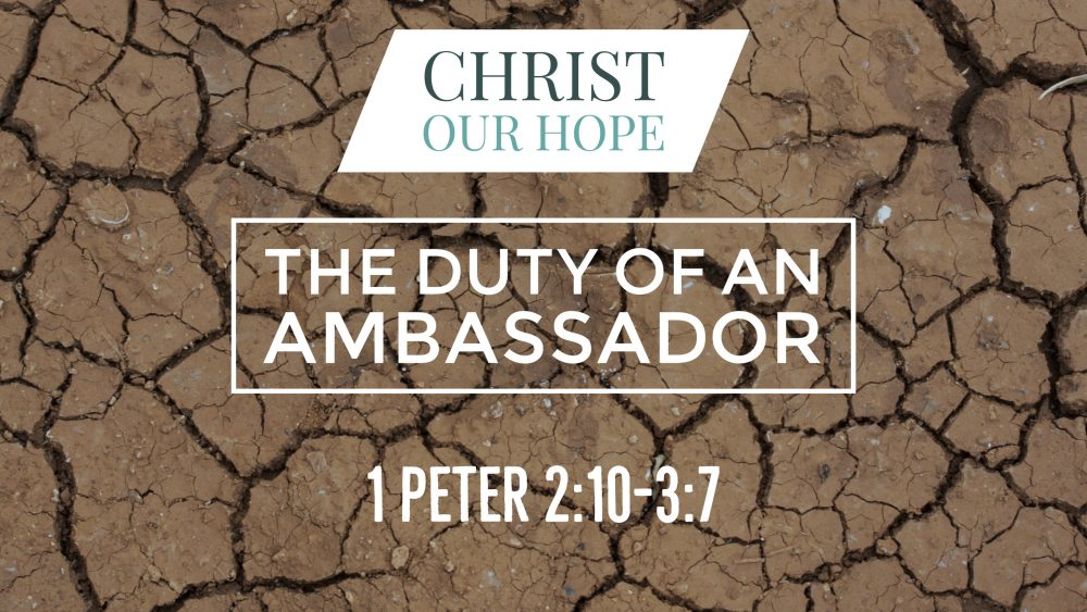 The Duty of An Ambassador | 1 Peter 2:10-3:7 Image