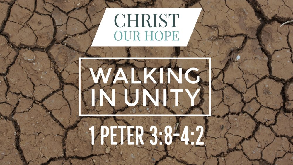 Walking In Unity | 1 Peter 3:8-4:2