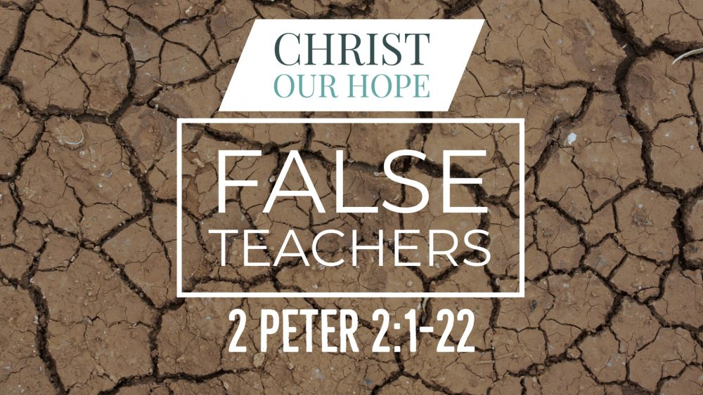 False Teachers | 2 Peter 2:1-22 Image