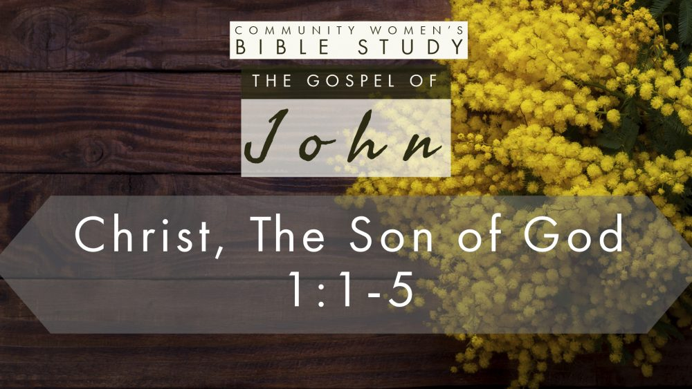 Christ, the Son of God | John 1:1-5 | CWBS