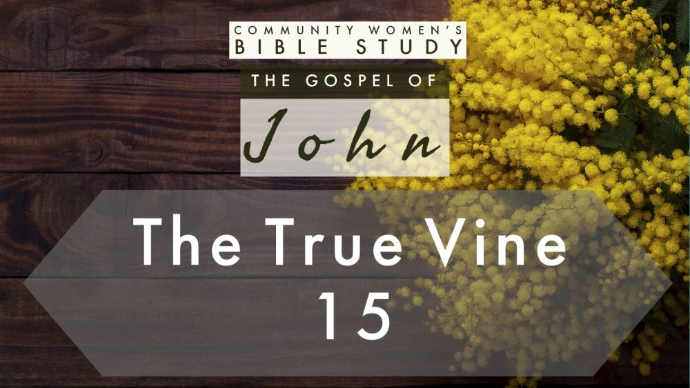 The True Vine | John 15 | CWBS Image