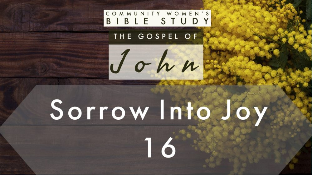 Sorrow Into Joy | John 16:20-25 | CWBS Image