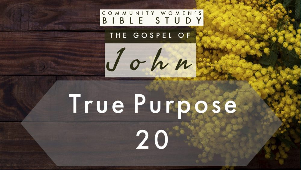 True Purpose | John 20 | CWBS Image